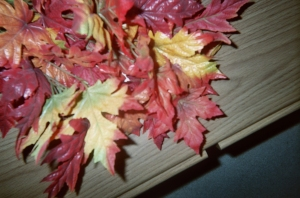 Watch kids' eyes grow big when you throw a pile of fall leaves in the air!