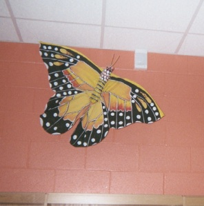How did this butterfly get to be so BIG?