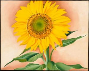 Georgia O'Keefe, A Sunflower from Maggie, 1937, oil on canvas, 16 x 20 in., Museum of Fine Arts, Boston, Alfred Stieglitz Collection-Bequest of Georgia O'Keefe, C 2007 Museum of Fine Arts, Boston, Photograph C 2012 Museum of Fine Arts, Boston